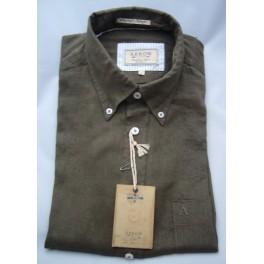 Arrow shirt Orlando