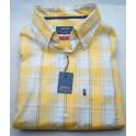 Arrow shirt Palm Beach