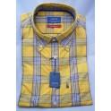Arrow shirt Caracas